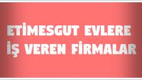 Etimesgut Evlere İş Veren Firmalar (Ankara)